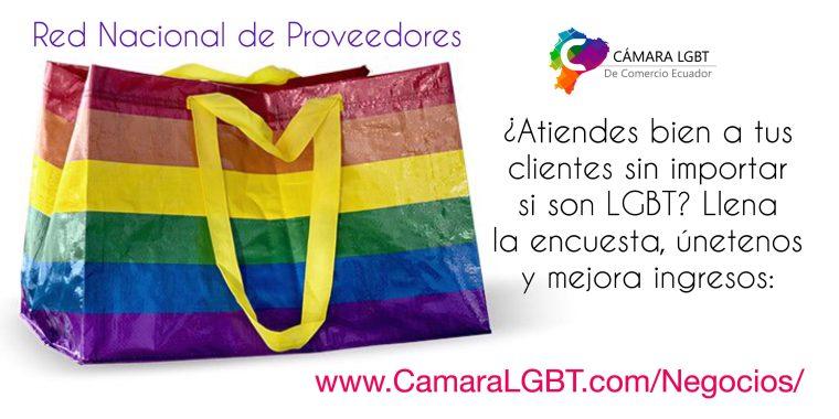 Encuesta Nacional de Proveedores LGBT Ecuador - Camara LGBT de Comercio