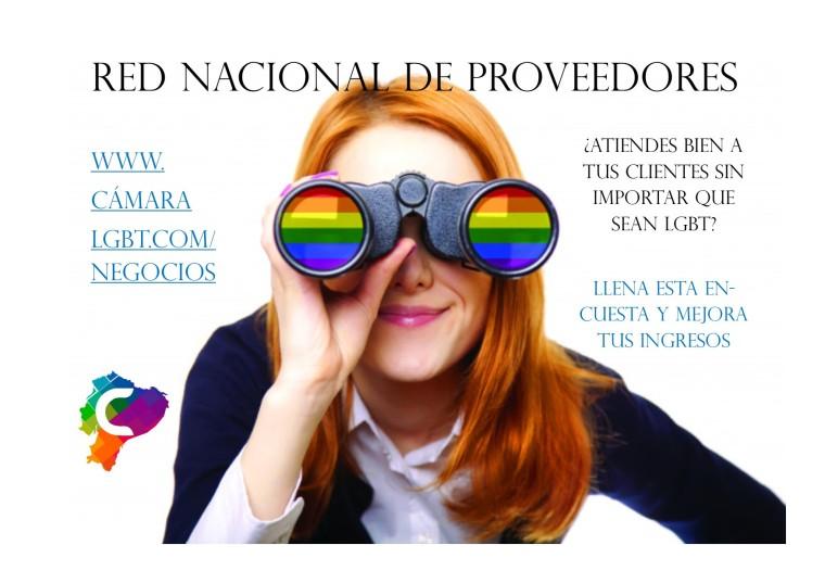 Red Nacional de Proveedores - Ultima semana de la encuesta Nacional - Camara LGBT de Comercio Ecuador